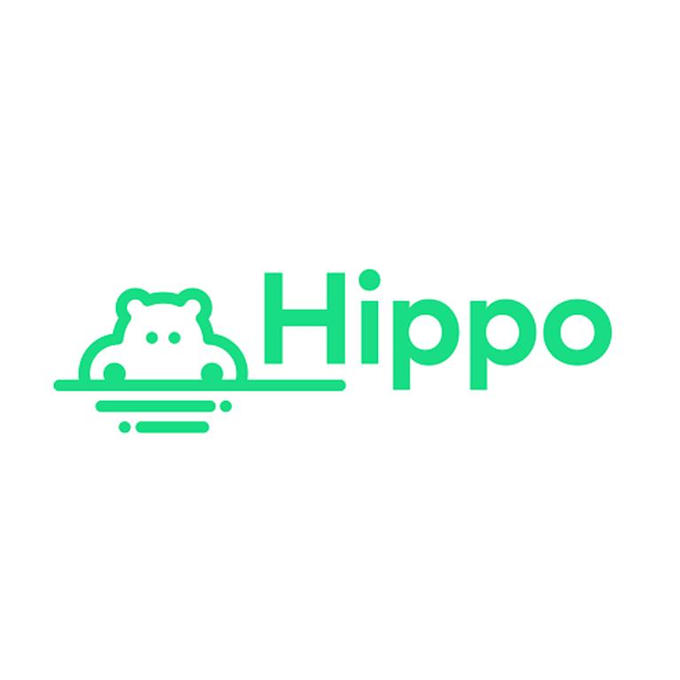 http://www.bnsgcapital.com/Hippo Insurance
